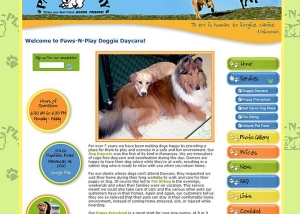 Paws-N-Play Dog Daycare Center Home Page