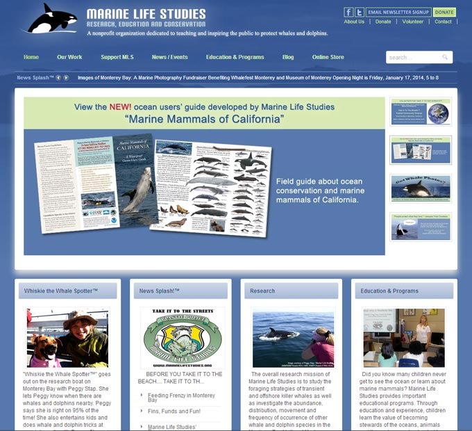 Marine Life Studies Home Page